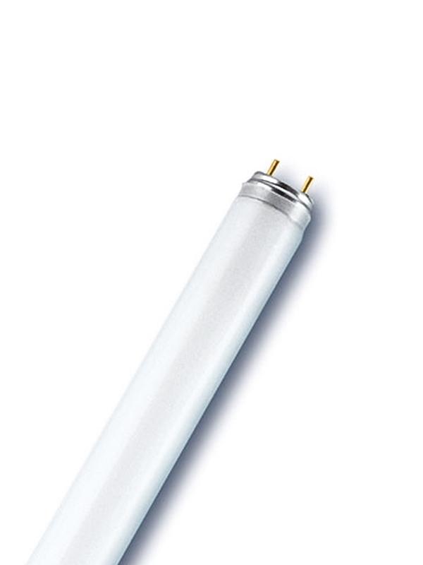 e4f0828ddca Щайнбергер ООД, Луминисцентна лампа T8 15W 450mm, ХАЛОГЕННИ ...